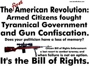 Gun rights activists alone could spawn millions of 2.0 revolutionaries. Photo source: http://goo.gl/1C7UYZ.
